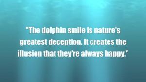 dolphin behavior in captivity