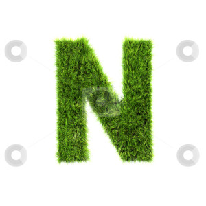 stock photo, 3d grass letter isolated on white background - N by
