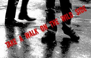 Walk The Wild Side Gata Negra