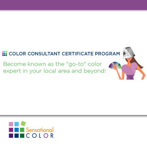 Color Classes & Ebooks by Color Expert Kate Smith Available On-Demand
