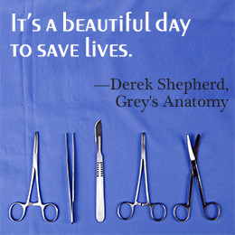 did you know the title of grey s anatomy is based on a human anatomy ...