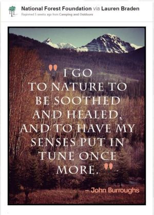 ... And Healed And To Have My Sense Put In Tune Once More - Camping Quote