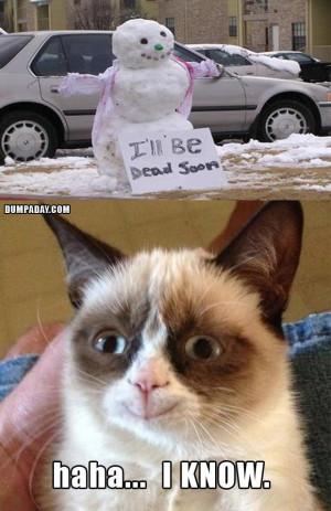 grumpy-cat-christmas-snow-man-melting-what-makes-grumpy-cat-happy ...