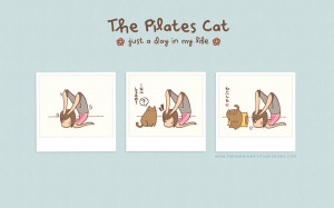 the pilates cat: just a day in my life