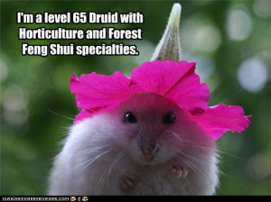Silly hamster, go get a proper hat…… And while you're at it ...