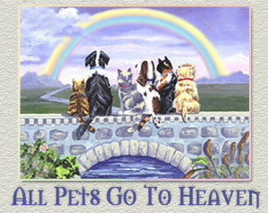 Can you imagine a heaven without pets?