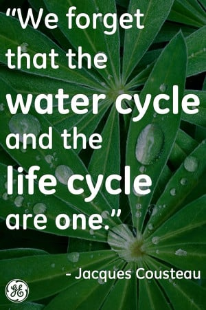 ... Forget That The Water Cycle And The Life Cycle Are One - Water Quote