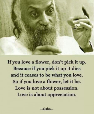 If you love a flower don't pick it