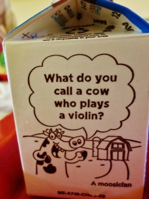 Cow playing a violin - milk carton joke