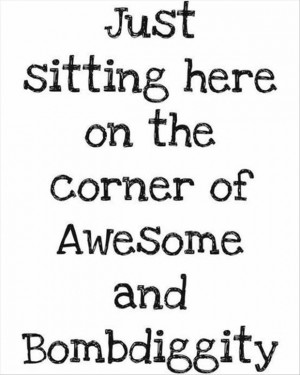 funny-quotes-sitting-on-the-border-of-awesome-and-bombdiggity