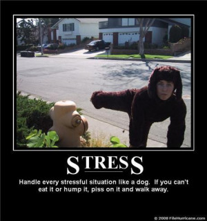 What is your stress level now?