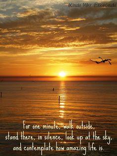 Quotes Sunsets, Quotes For Sunsets, Quotes Sunri, Mornings Sunrises ...