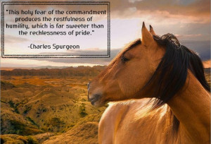 Charles Spurgeon quote.