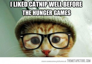 Funny photos funny hipster kitten glasses