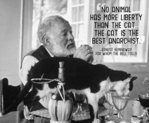 HemingwayCat People, Hemingway Cat, Ernest Hemingway, Quote, Keys West ...