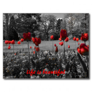 Tulips With Quotes And Sayings Calendars From Zazzle