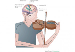 Music invokes ALL of the senses . It is physical, which helps the ...