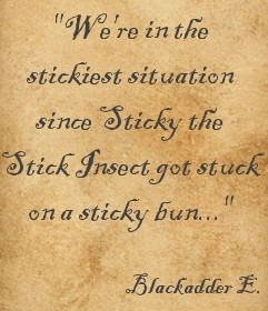 some of the best lines from all four series with the Blackadder quote ...