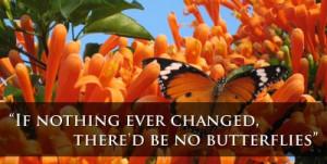 logo_butterfly.jpg