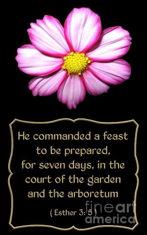 Bible Quote from Esther Photograph - Cosmos Flower with Bible Quote ...