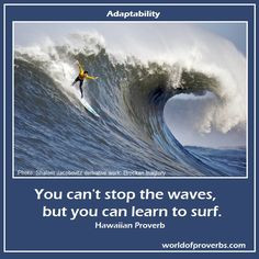 World of Proverbs - Famous Quotes: You can't stop the waves, but you ...