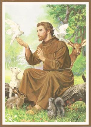 St. Francis of Assisi by pikachucutie17.deviantart.com on @deviantART