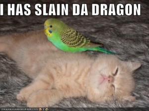 Cute-Funny-Kitten-03.jpg#funny%20kitten%20pics