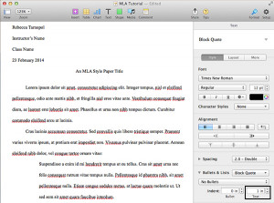 Essay Block Quote Example