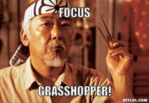 Mr miyagi focus Generator