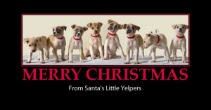 merry christmas greetings-cute dogs-santa's yelpers-funny
