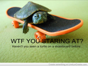 quotes and sayings skateboarding quotes life of a skateboarding quotes ...