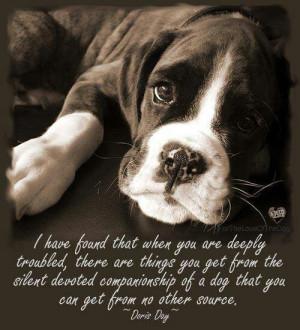 Dog. Companionship. Doris Day. #quote