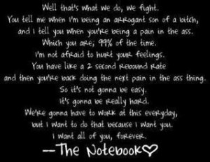 quotes the notebook jpg the notebook quotes about love ali and noah