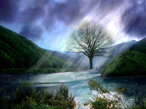 God-The creator Gods Beauty