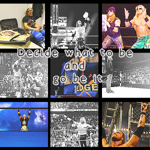 wwe quote