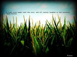 Anne Bronte sunshine quote