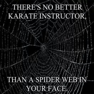 There's no better Karate instructor than a Spider Web in your face!