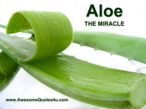 The aloe vera miracle: A natural medicine for cancer, cholesterol ...