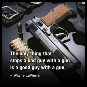 Good Guy with a gun 2