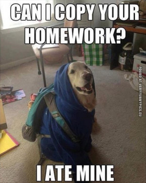 The dog ate his own homework for a change