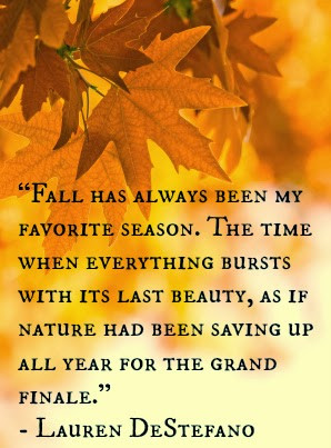 Fall has always been my favorite season. The time when everything ...