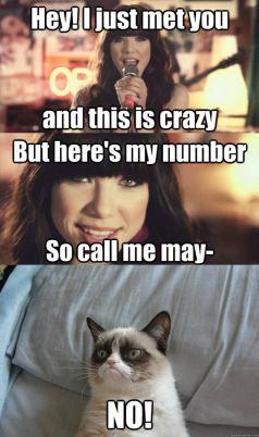 Grumpy Cat Quotes Titanic Grumpy Cat Quotes