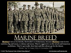 Marine Breed. Marine+Motivational+Quotes | Marine Corps Moto,Marine ...