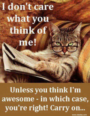 Funny Quotes-I don't care what you think of me!