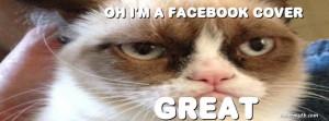 Tags: cat , animal , Grumpy cat ,