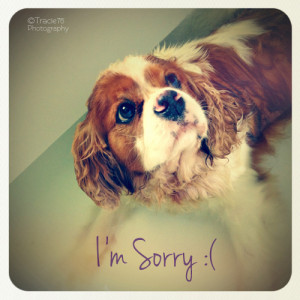 Say sorry with this cute card. It's sure to make a frown turn into a ...