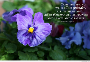 Spring quotes images & spring wallpapers quotes