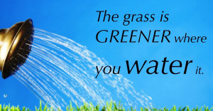 The-grass-is-greener-quote1_1200x627.jpg