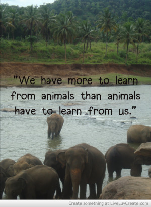 Inspirational Quotes and Elephants