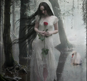 Love allows understanding to dawn, and understanding